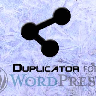 Duplicator For Migration