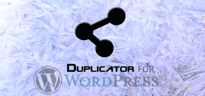 Duplicator For Migration